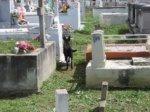 Perro en cementerio