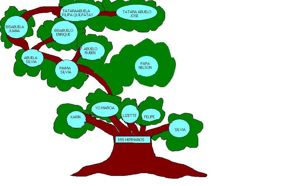 Family Tree Builder - Programa gratis de genealogía
