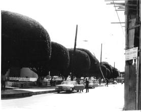 Plaza Salinas década 1970