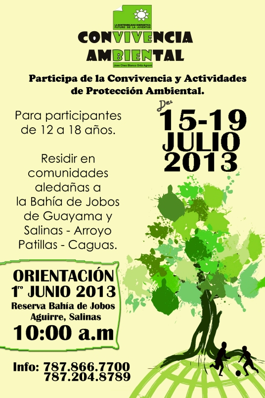 Convivencia Ambiental as Smart Object-1