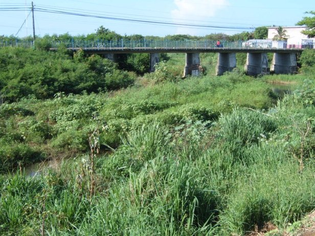 Puente de Los Poleos, 2010