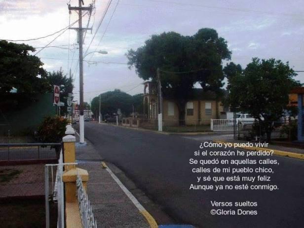 Calle Unión salinas 2014