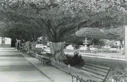 Plazasalinas1950