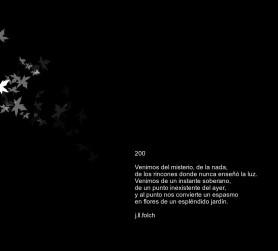 fondo negro (2) (1)