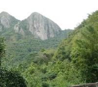 paisaje de la reserva (2)